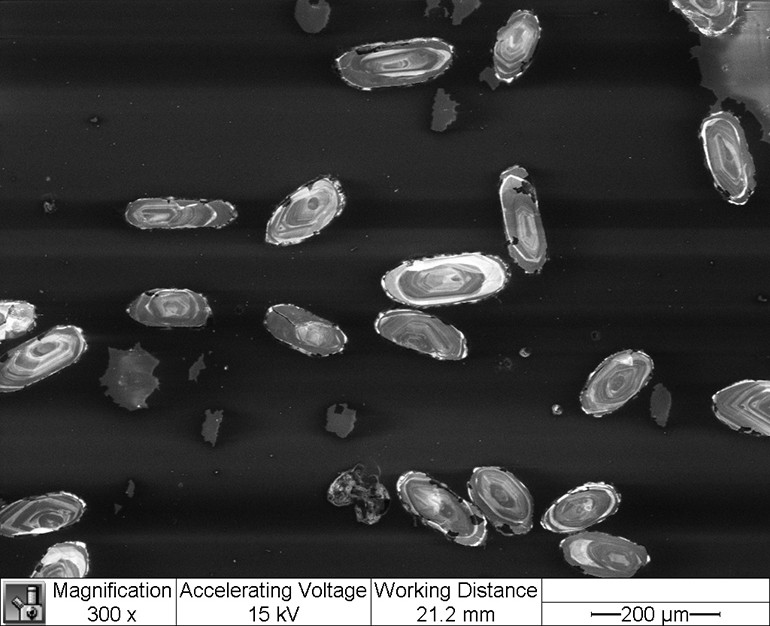 Many small samples of the mineral zircon in a microscope.